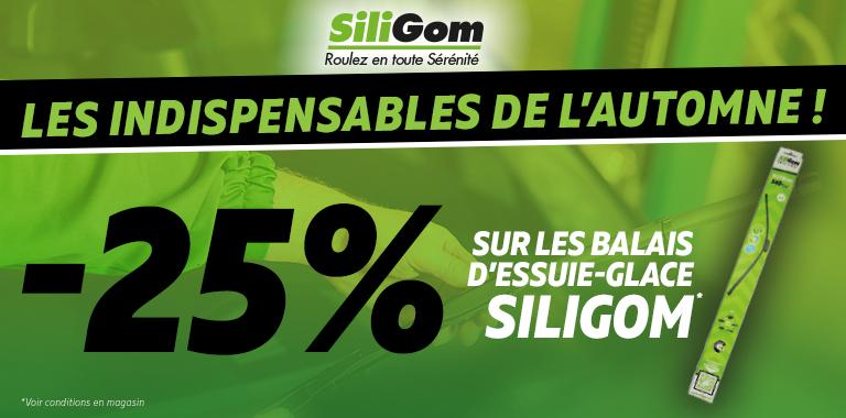 25% DE REMISE SUR VOS ESSUIE-GLACE