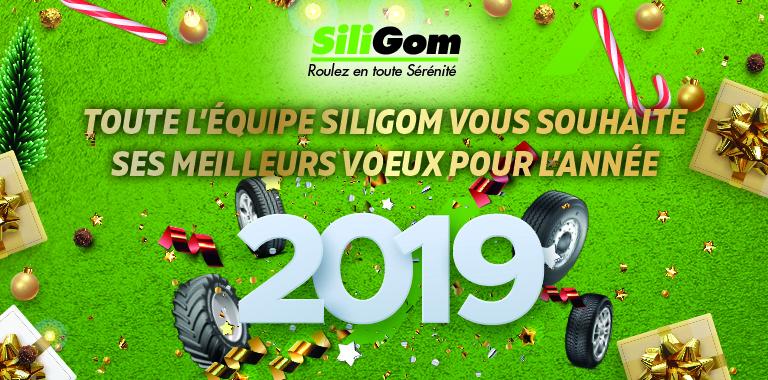siligom vous souhaite une bonne d'année 2019